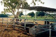 Farm Use Toronto