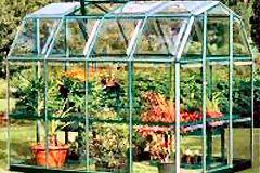 Greenhouse Toronto